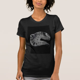 T-shirts jfb_092