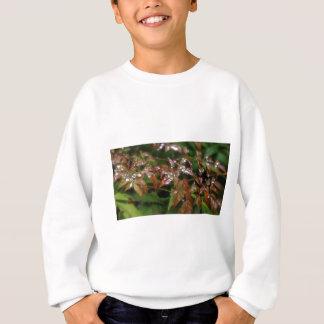 T-shirts Perolização