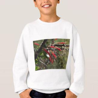 T-shirts Pétalas vermelhas da flor do deserto