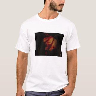 T-shirts PIC 001 da etiqueta