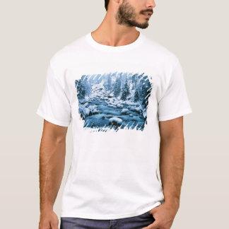 T-shirts WA, floresta nacional de Wenatchee, cascata