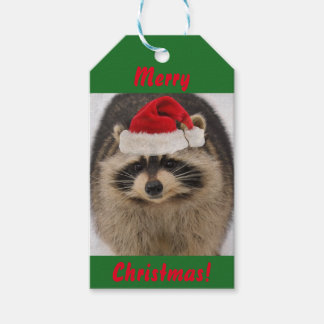 Tag do presente do guaxinim do Natal