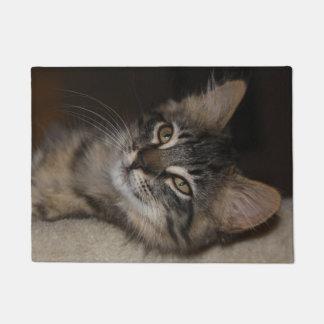 Tapete Doormat sonolento Cáspio do gatinho