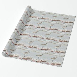 Tarambola do beira-mar papel de presente