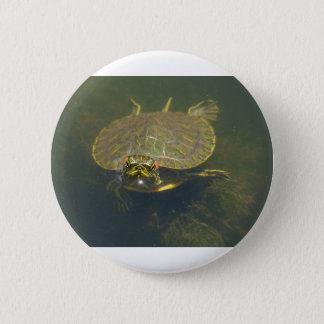 tartaruga bóton redondo 5.08cm