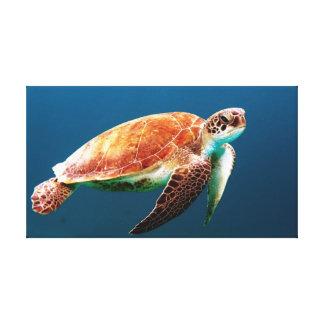Tartaruga de mar verde bonita impressão em canvas