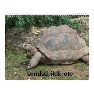 tartaruga de país de calendário
