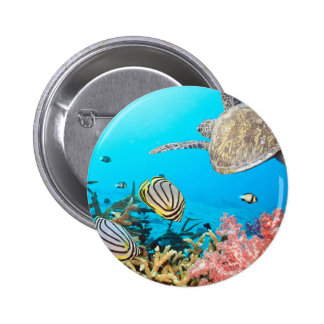 Tartaruga Naturescape do recife de corais Bóton Redondo 5.08cm