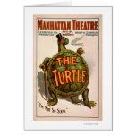 Teatro New York Broadway de Manhattan a tartaruga Cartoes