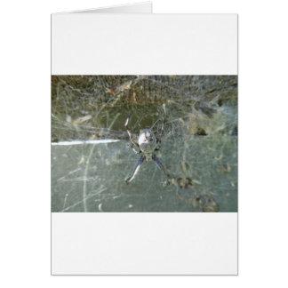 Tecelão da esfera cartão comemorativo