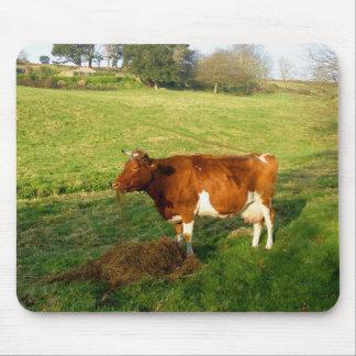 Tempo de alimentação para a vaca de Guernsey Mouse Pad