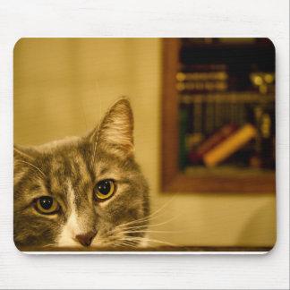 Tempo do estudo? mouse pad