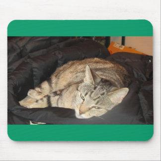 Tempo do Snuggle para o índigo Mouse Pads