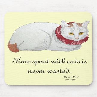 Tempo Mousepad do gato