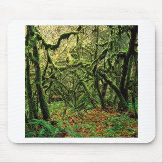 Tempos Mossy das árvores da natureza Mousepad