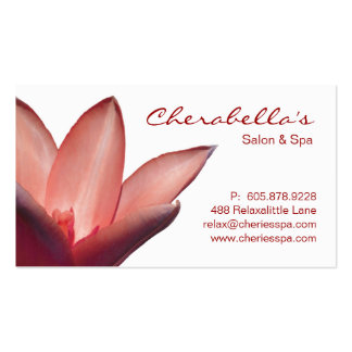Termas - cartão de visita da terapia da massagem d