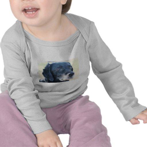 TESS - Labrador preto Photo-3 T-shirts