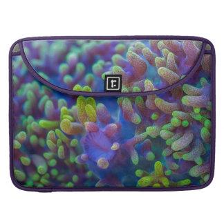 Teste padrão de Corallimorph Bolsa Para MacBook