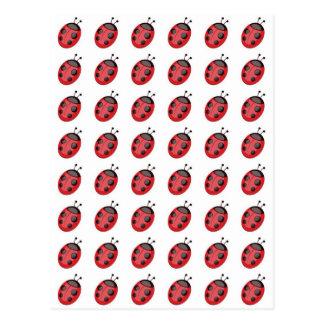 Teste padrão dos joaninhas. Design dos joaninhas Cartão Postal