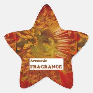 Texto Fragrâncias AROMÁTICAS Anuncie a especiali Adesivo Em Forma De Estrela