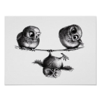 Three Owls - Freedom and Fun Pôster