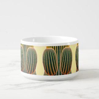 Tigela De Chili Bacia do pimentão do braço do Saguaro