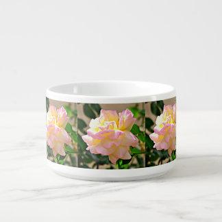 Tigela De Sopa Bacia cor-de-rosa do pimentão da beleza