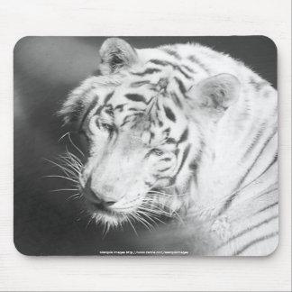 Tigre branco mouse pad
