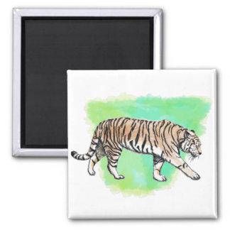 Tigre da aguarela ímã quadrado