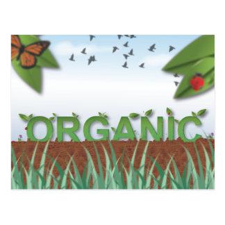 Tipografia orgânica cartões postais