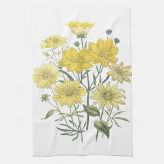 Toalhas amarelas dos Wildflowers das margaridas
