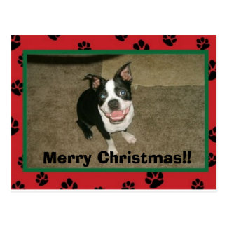 tobyxmascard, Feliz Natal!! Cartão Postal
