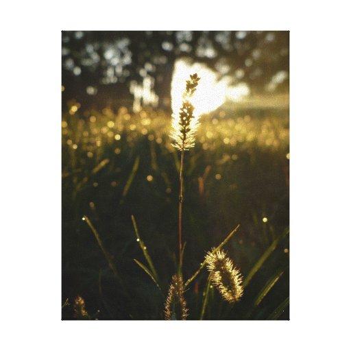 Tocha na fotografia da natureza do nascer do sol impressão em tela canvas