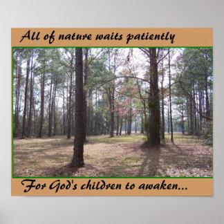 Toda a natureza espera o poster
