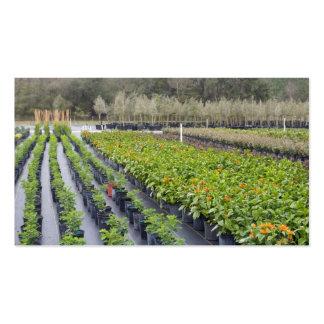 Tomar partido-Berçário Personalize-2 e jardinagem Cartão De Visita