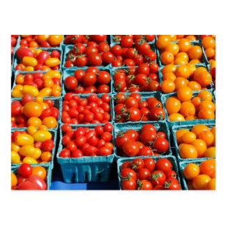 Tomates vermelhos e alaranjados pequenos cartão postal