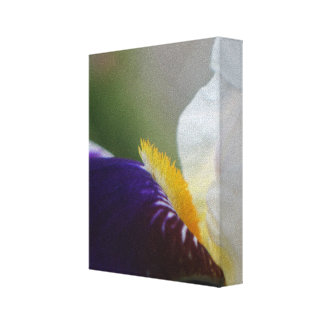 Trabalhos de arte do impressão da fotografia da fl impressão de canvas envolvida