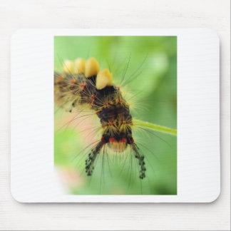 traça do vapourer (lagarta) mouse pad