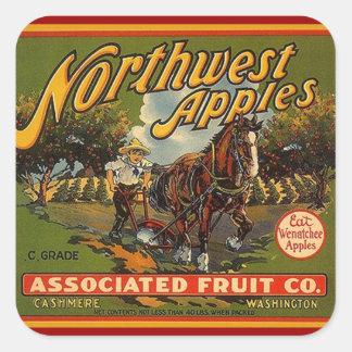 Tração engatada cavalo das maçãs do Caixa-Anúncio Adesivos