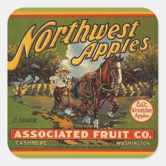 Tração engatada cavalo das maçãs do Caixa-Anúncio Adesivo Em Forma Quadrada