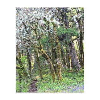 Trajeto de floresta impressão em tela