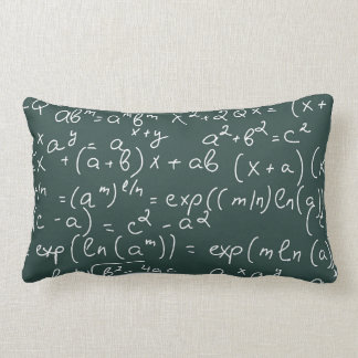 Travesseiro da matemática almofada lombar