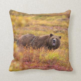 Travesseiro decorativo do urso da natureza almofada