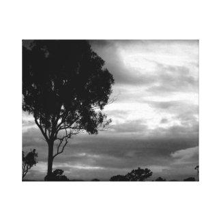 Treescape preto & branco impressão em tela