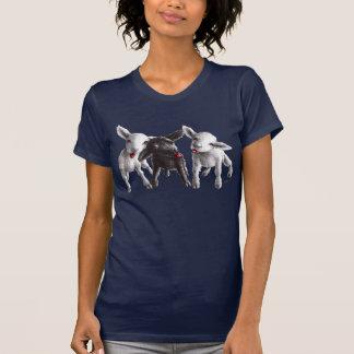 Três carneiros insolentes engraçados t-shirts