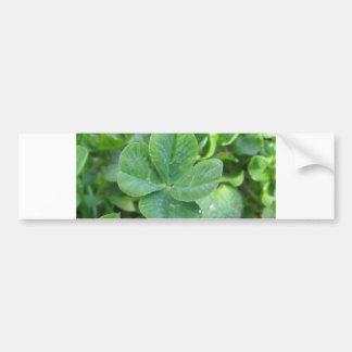 Trevo de quatro folhas adesivos