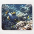 Triggerfish Mousepad do titã