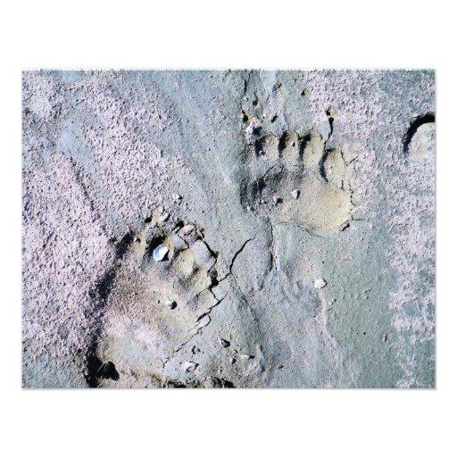 trilhas do urso convites personalizados