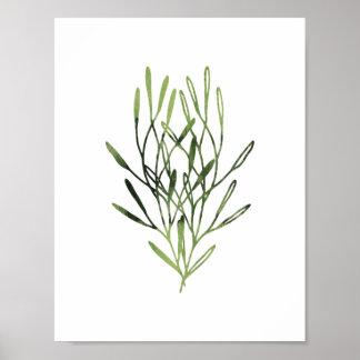 Trio botânico do impressão da aguarela
