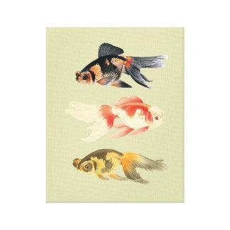 Trio botânico dos peixes impressão em canvas